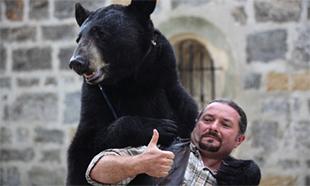Non aux spectacles de l'ours Valentin à Volonne pour la fête médiévale