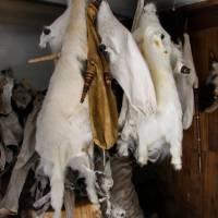 Abolition de la marque KODDES produisant des sacs en peaux de chèvres