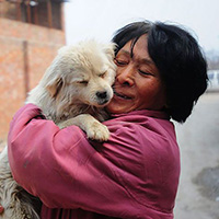 Pour le sauvetage d'une vingtaine de chiens